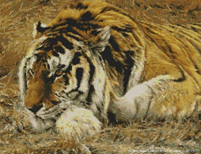 В данном разделе Вы можете скачать бесплатно схемы Тигры - Животные для вышивки крестом.