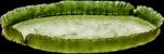 0_603e0_e37cd31f_S (150x50, 16Kb)