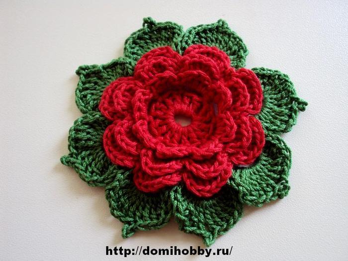 цветок-крючком1 (700x525, 61Kb)