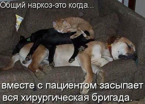 http://img0.liveinternet.ru/images/attach/c/3/75/359/75359934_3802001_1_24.jpg