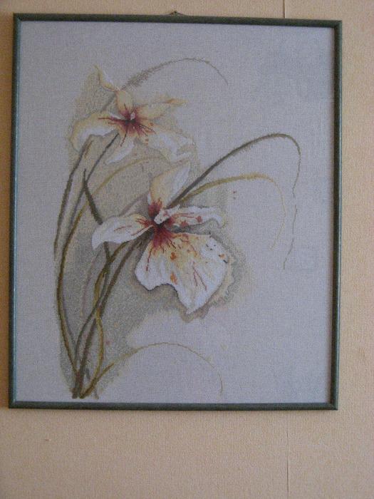 орхидеи (525x700, 163Kb)