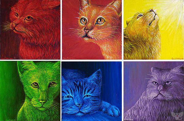 1-rainbow-cats-cara-bevan (600x396, 157Kb)