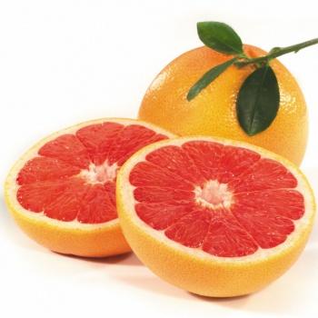 grapefruit (350x350, 41Kb)