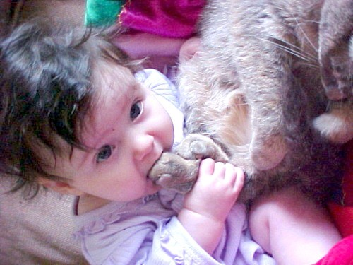 01_pets_and_kids (500x375, 56Kb)