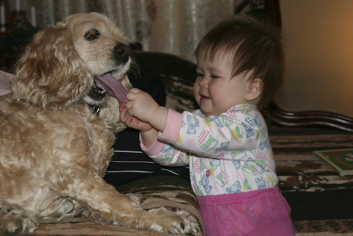 26_pets_and_kids (700x467, 135Kb)