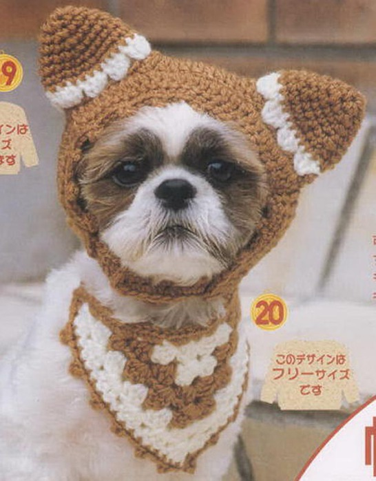 3282783_Knit_small_dog_326033