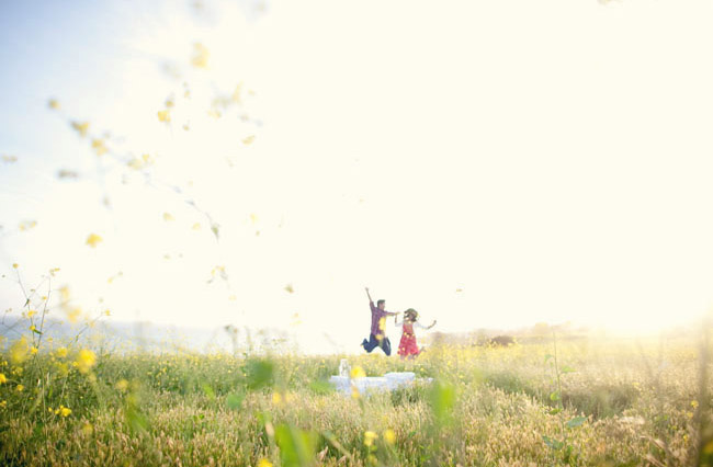 3399331_photographerCarolineTran_bed_field_051 (650x426, 63Kb)