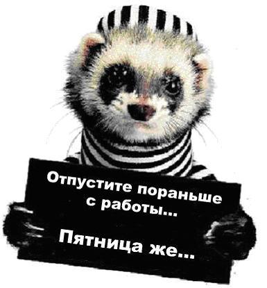 пятница/4348076_pyatnicapyatnica4 (385x415, 24Kb)