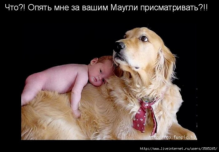 дети и животные (698x486, 167Kb)