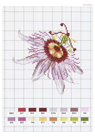 Flowers Fleurs (2004)_hq_27 (405x582, 52Kb)