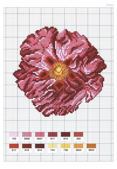 Flowers Fleurs (2004)_hq_37 (405x582, 56Kb)