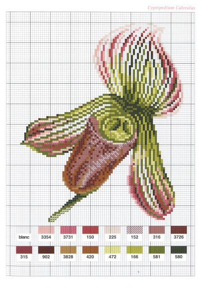 Flowers Fleurs (2004)_hq_49 (405x582, 55Kb)