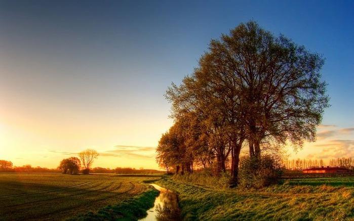 Красивые фотографии природы 8