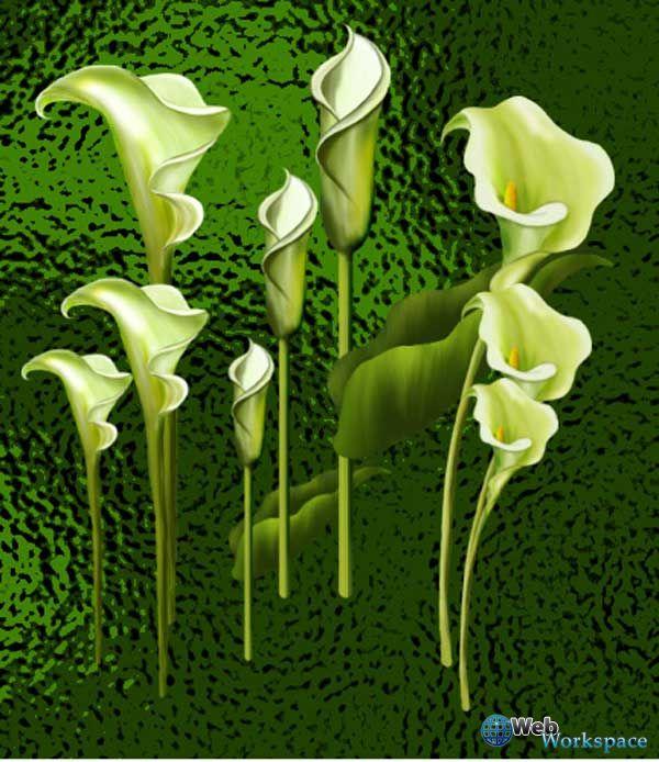 1274038862_dpf-flower-group-1_3 (600x694, 84Kb)