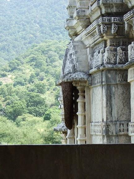 Храмовый комплекс Ранакпур - Jain Temples, Ranakpur 49096