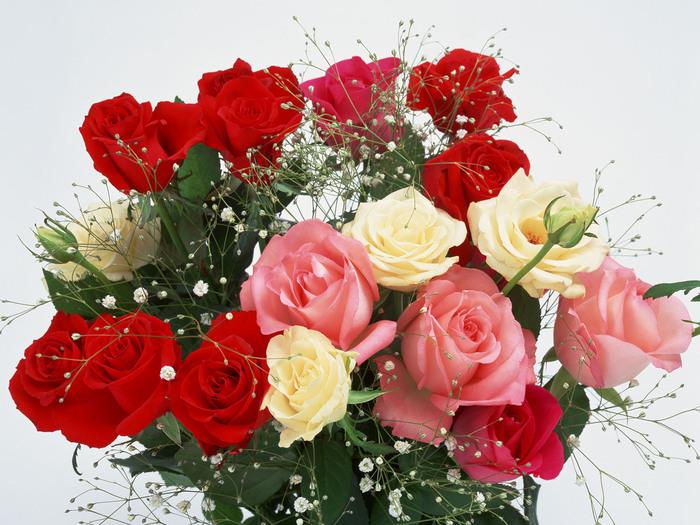23360796_1208886948_2048flower1009 (700x525, 156Kb)