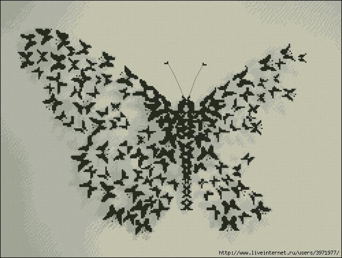 3971977_Butterflies_002 (700x529, 344Kb)