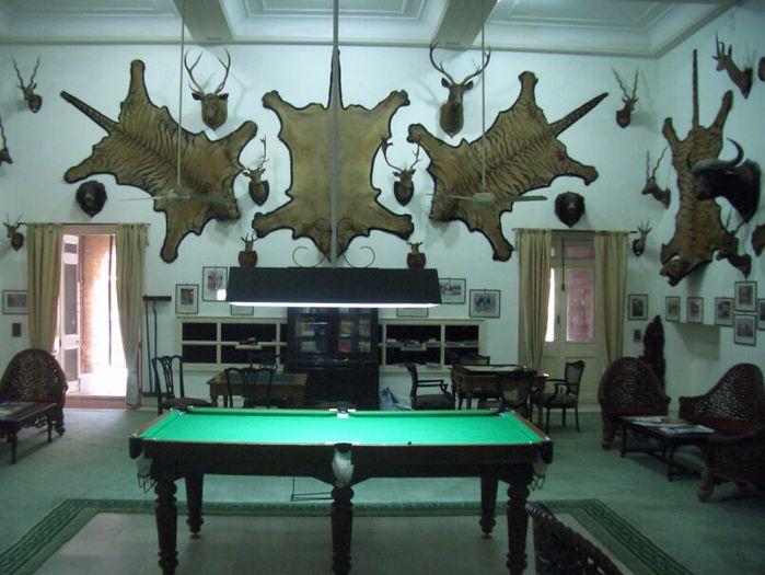 отели Индии и их интерьер 24031