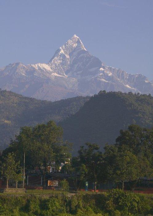 Nepalweb (497x700, 50Kb)