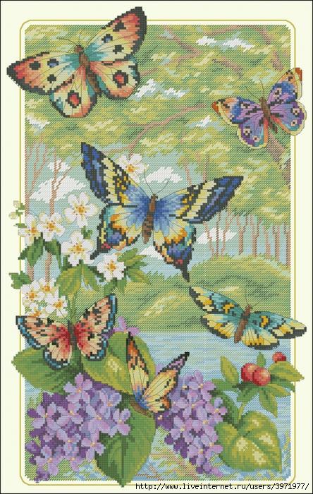 3971977_Butterflies_101 (444x700, 364Kb)