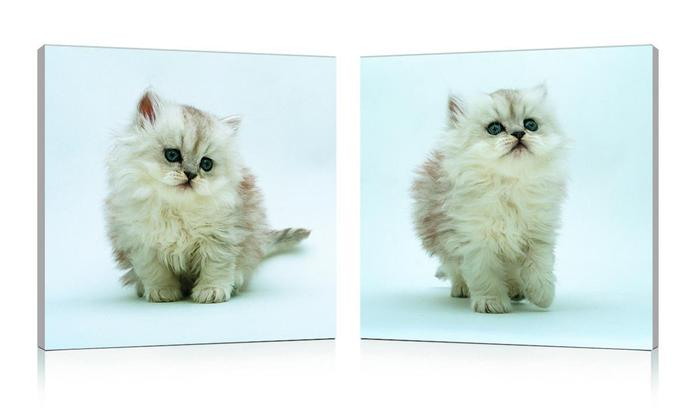 tableau-moderne-kittens-(lot-de-2)-11412-1_0_0_0 (700x408, 19Kb)