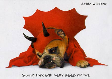 lghrf0207+going-through-hell-keep-going-zelda-wisdom-mini-poster (452x320, 19Kb)