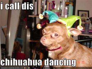 Собачьи сальса вечеринки