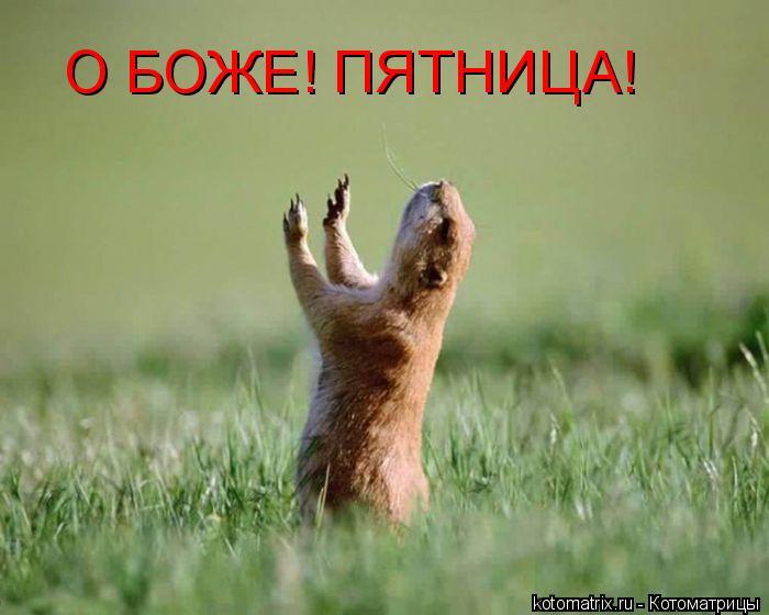 О, Боже, пятница!/4348076_HpyatnicaX (700x560, 43Kb)