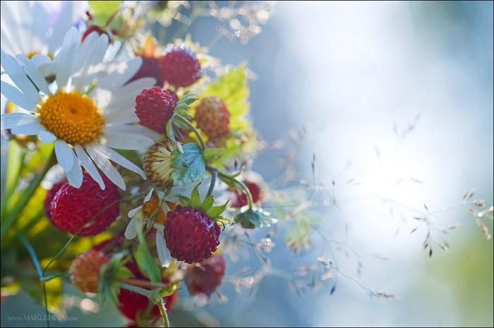 fleurs (700x465, 66Kb)