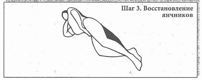 Сексуальное учение Белой Тигрицы (Си Лай) (700x277, 29Kb)