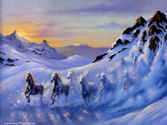 Animals_Horses__001983_1 (700x525, 133Kb)