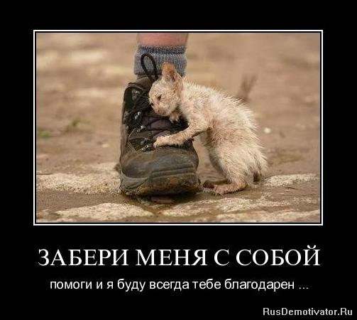 3089600_post115834_img1_1_ (503x450, 40Kb)