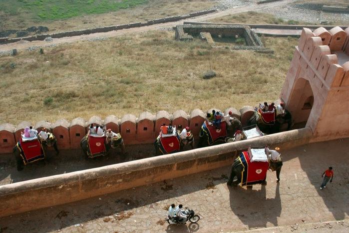 Форт Амбер (Amber Fort) 35749