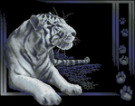 Превью Panna J-27 White tiger (570x447, 176Kb)