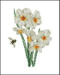 Превью TG 1087 Narcissus (333x420, 64Kb)