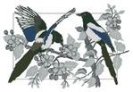 Превью TG Birds (278x192, 16Kb)