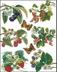 Превью TG-3021-Berries (537x684, 418Kb)