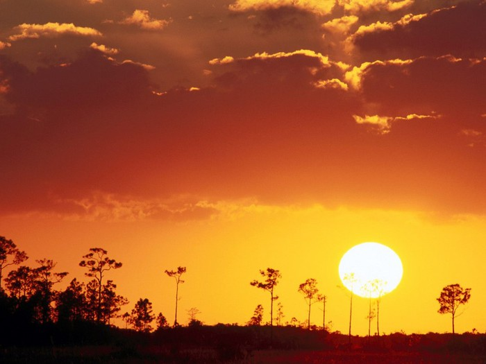 Setting_Sun_over_the_Swampland,_Everglades_N.P.,_Florida (700x525, 59Kb)
