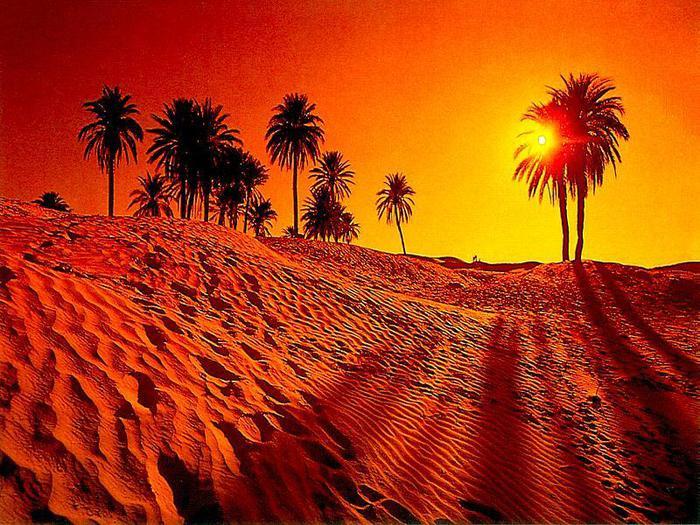 oazis-gizni (700x525, 100Kb)