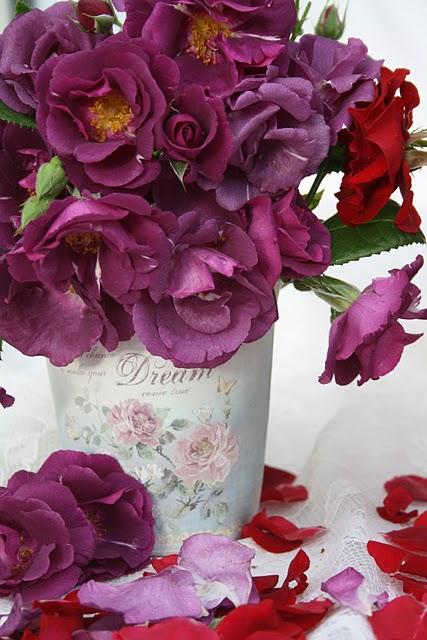 Фото восхитительных цветов