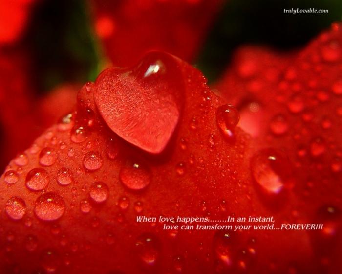 3475948_798-when-love-happens (700x560, 208Kb)
