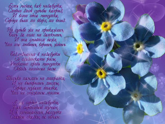 Фото с цветов со стихами