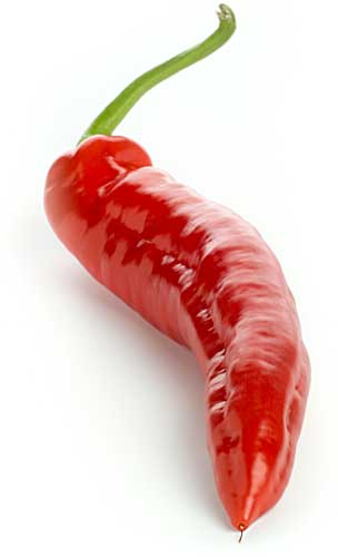 3279085_hot_red_pepper_lg (304x500, 9Kb)