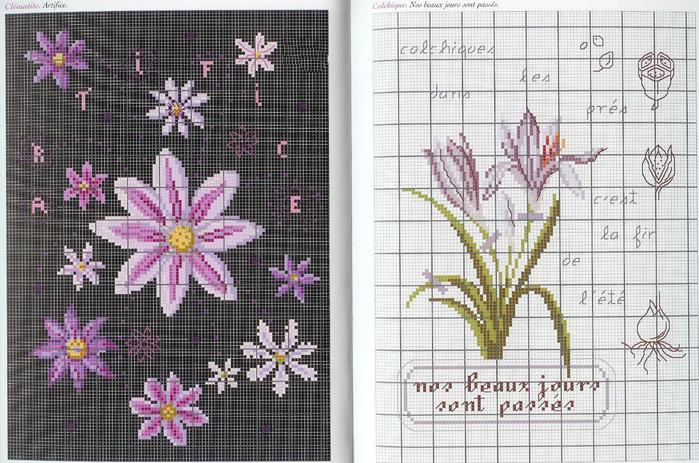 Langage des Fleurs 9 (700x463, 169Kb)