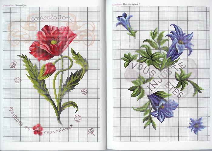 Langage des Fleurs 10 (700x500, 171Kb)