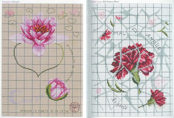 Langage des Fleurs 18 (700x475, 175Kb)