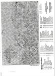 Превью 9 (508x700, 412Kb)