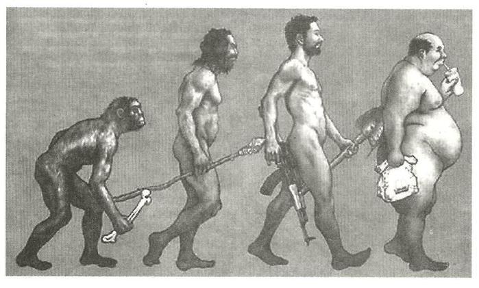 эволюция (700x421, 50Kb)