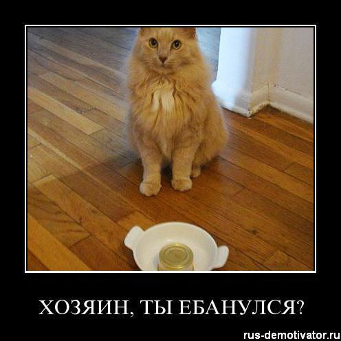 1302415507_hozyain-ti-ebanusya (496x496, 31Kb)