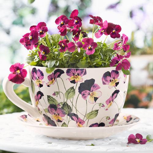 tea-cup-as-floral-vases2 (500x500, 70Kb)